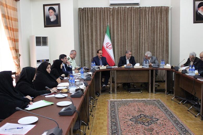 شورای هماهنگی استان